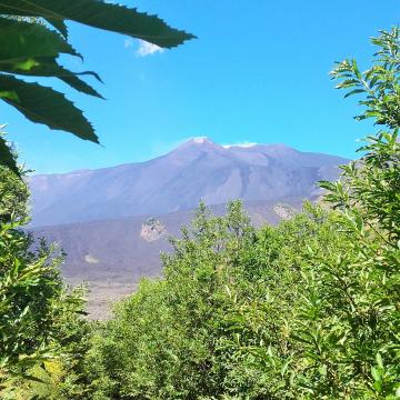 Tour of Etna