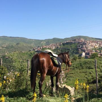Transicilian from Corleone to Etna - 12 days