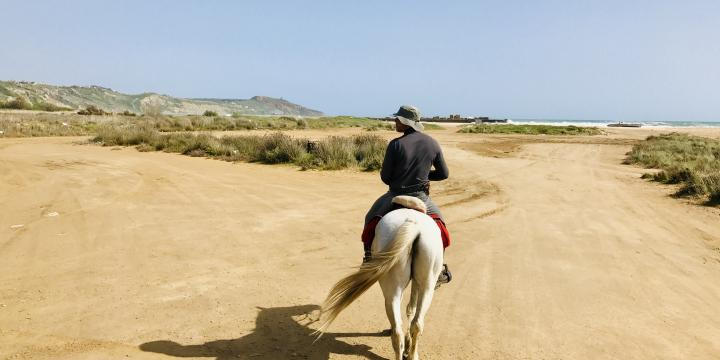 Horse_riding_in_Sicily
